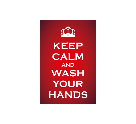 Keep Calm and Wash your Hands Vinyl Posters